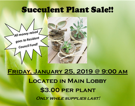 Riverside Plant Sale